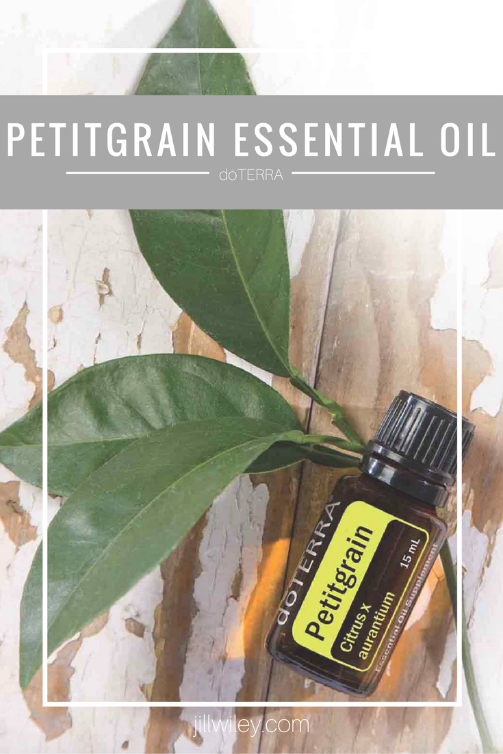 Petitgrain Essential Oil Jillwiley Com
