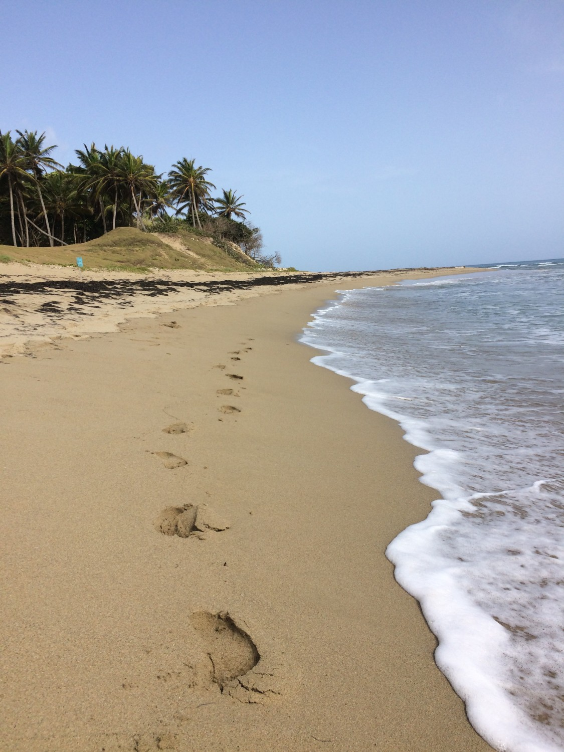 14 days in cabarete jillwiley adventure