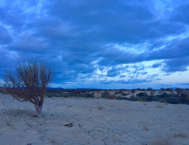 San Felipe Baja Sunset