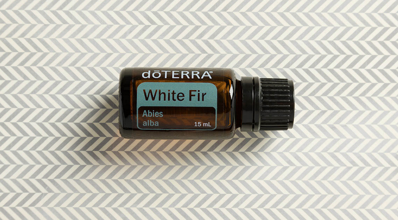 white fir essential oil doterra jillwiley