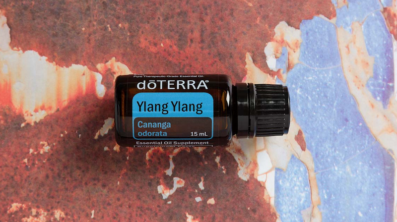 ylang ylang essential oil doterra jillwiley