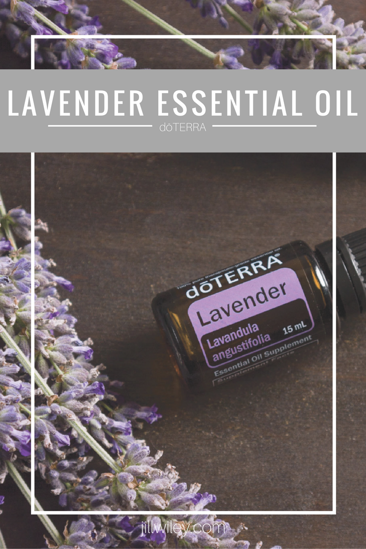lavender doterra essential oil
