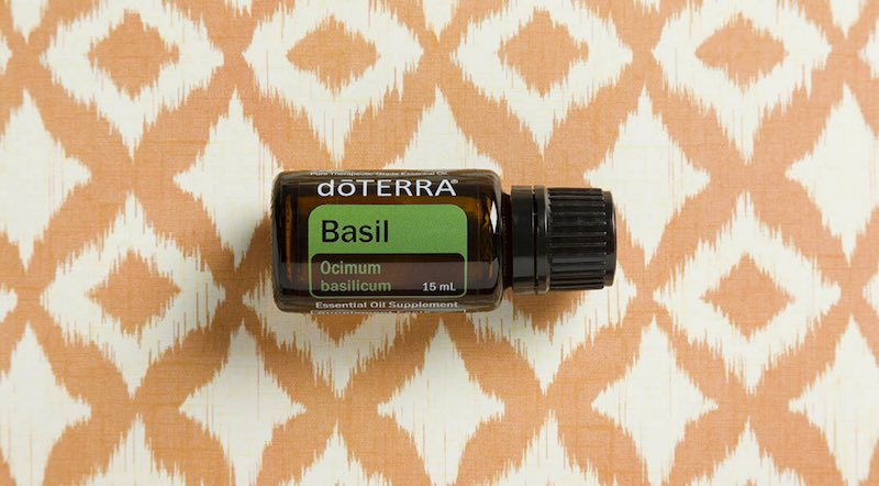 basil essential oil doterra jillwiley