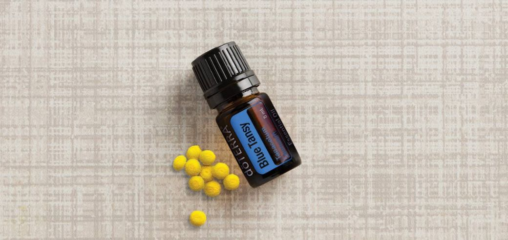 blue tansy essential oil jilwiley doterra